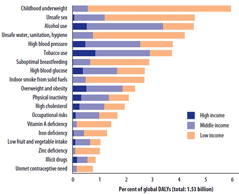 Chart showing global percentages of DALYs attributed to 19 leading risk factors by income group